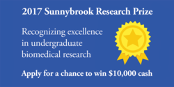 2017 Sunnybrook Research Prize