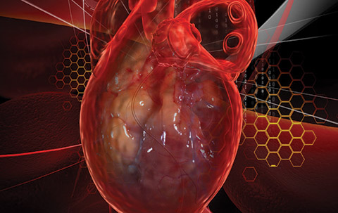 Targeted triage and more funding needed to improve heart procedure process
