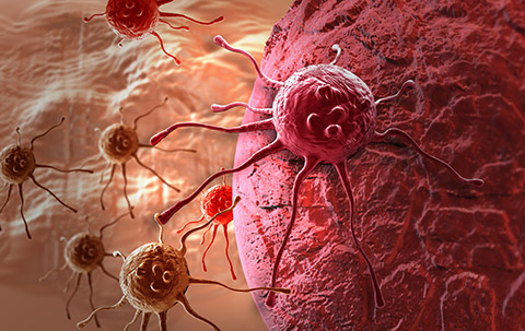Mutations in tumour-halting gene may be useful markers for prognosis