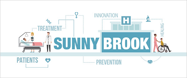 Sunnybrook's Strategic Plan 2018-21