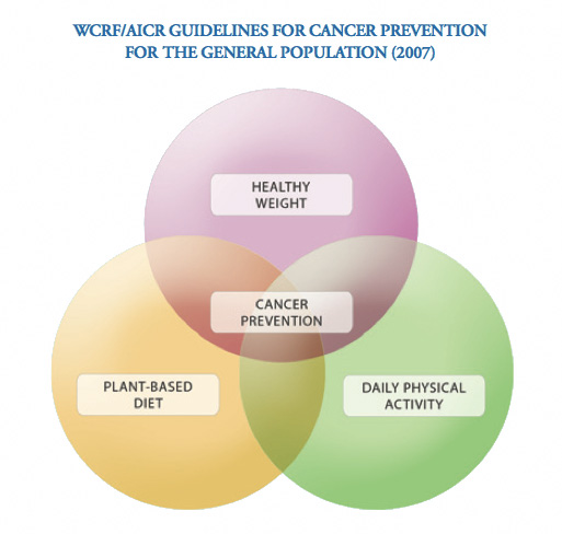 An image demostrating the WCRF AICR guidelines for cancer prevention for teh general population, 2007. It shows healthy weight, plant-based diet, and daily physical activity overlapping in a venn diagram, with cancer prevention being the result.