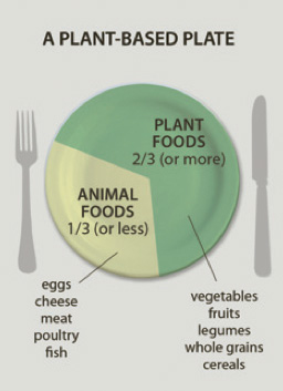 A plant based plate, showing two thirds occupied by plant foods, including vegetables, fruit, legumes, whole grains and cereals. The remaining third is occupied by eggs, cheese, meat, poultry or fish.
